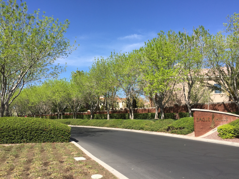 Eagle-Hills-Homes-For-Sale-Entrance