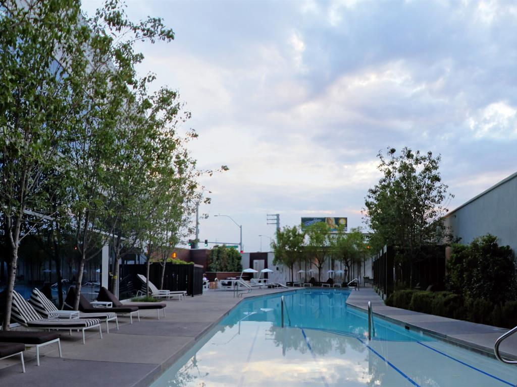 The-Martin-Condos-Pool-Area
