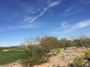 TPC-Canyons-Golf-Course-Homes-For-Sale