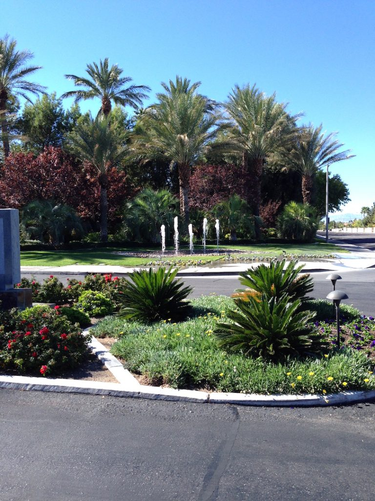 The-Fountains-Guard-Gated-Homes-For-Sale-Las Vegas